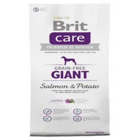 Expirace Brit care  1,0kg Grain-free Giant Salmon Potato