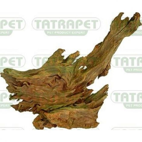 Kořen Jati 15-23cm S