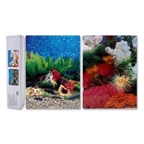 Pozadí oboustranné 50cm modrý svět/korál