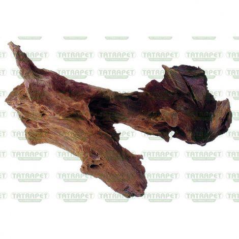 Kořen Jati 20-25cm  S