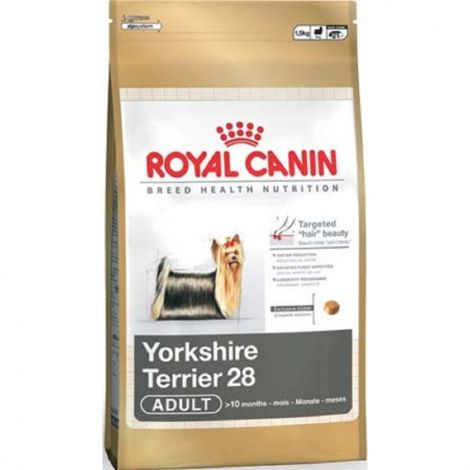 RC  0,5kg mini Adult yorkshire dog