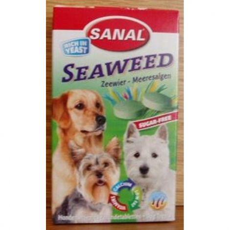 Sanal dog 100tabl.mořská řasa