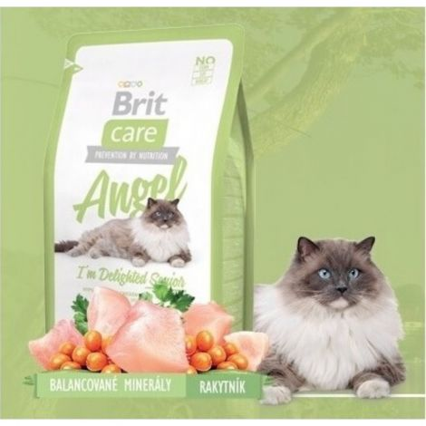 Expirace Brit Care 2,0kg cat Angel Senior
