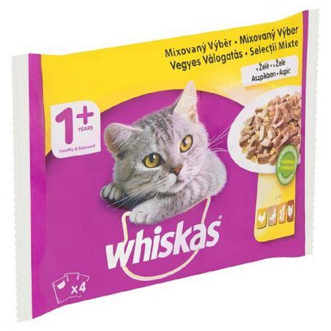 Whisk.100gx 4ks kaps.mixový výběr v želé/13ks