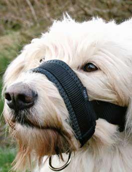 Náhubek fixační nylon podložený pes XXL 28-38cm TR